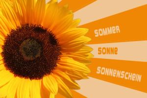 sommer-sonnenblume